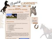 Salon du cheval de Cahors